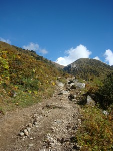 The trail that lead to Jhomolari Base Camp